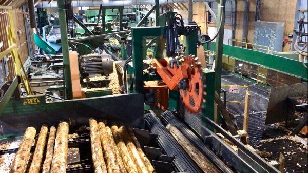 Pallet mill twin bandmill