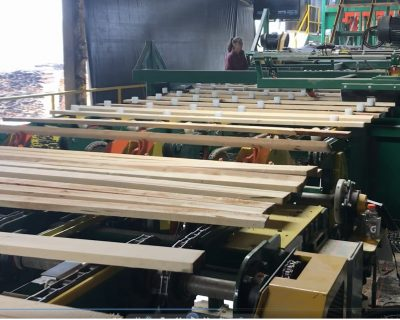Hardwood trimming-sorting line
